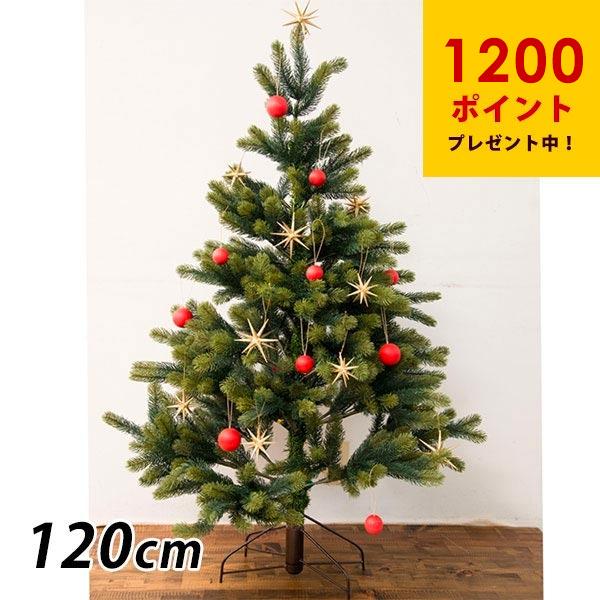 クリスマスツリーの画像 p1_35
